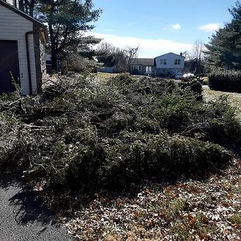 Junk Elves Yard Waste Removal Bucks County PA