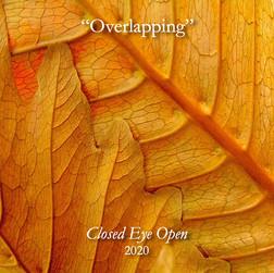 Overlapping 1.jpg