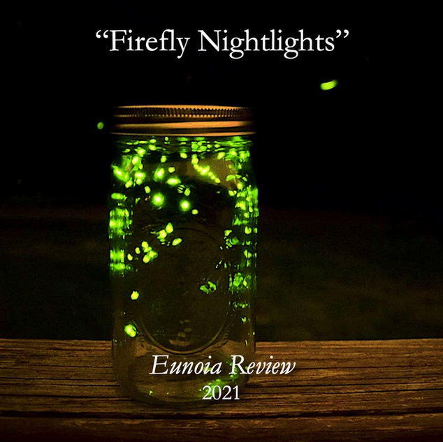 Firefly Nightlights.jpg