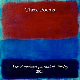 American Journal of Poetry.jpg