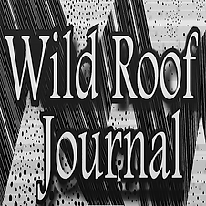 Wild Roof.png