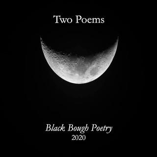 Black Bough Pic.jpg