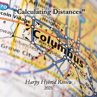 Calculating Distances copy 2.jpg