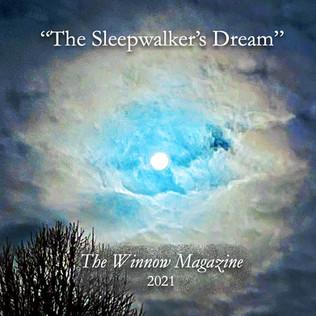 Sleepwalkers Dream.JPG