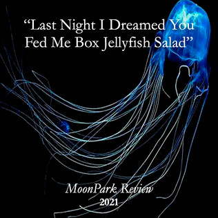 Box Jellyfish copy.jpg