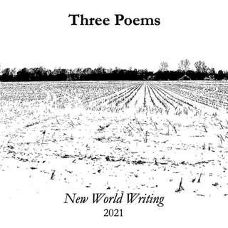 Hinterlands for New World Writing.jpg