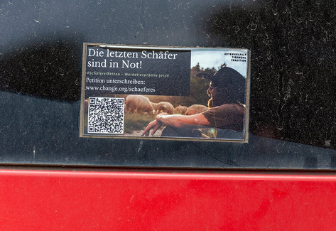 Wanderschäfer Odenwald