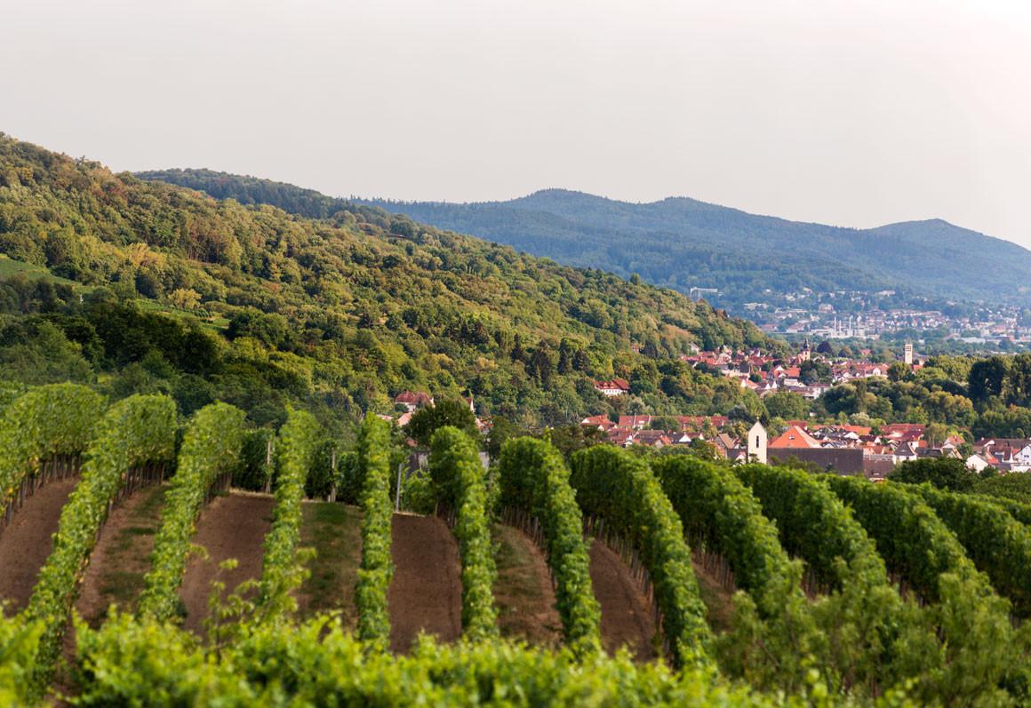 Heppenheim mit Blick in den Odenwald