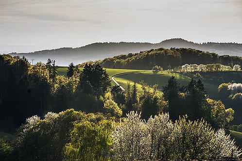 Spring Odenwald