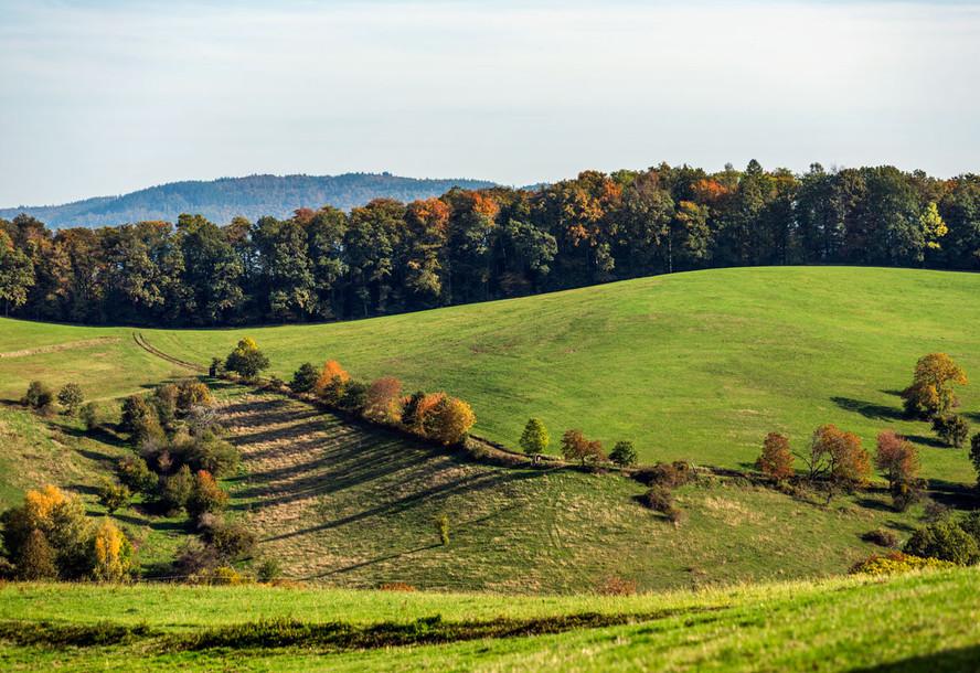 Herbstlandschaft im Odenwald