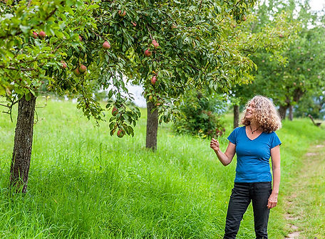 Biodiversitaet-Odenwald-Frau-Joest-Rimbach-10Aug2021-1-24.jpg