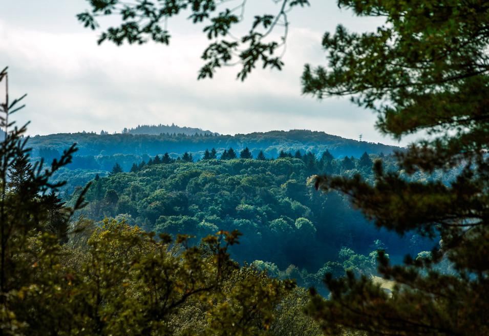 Schöne Aussicht auf umliegende Wälder und Landschaften