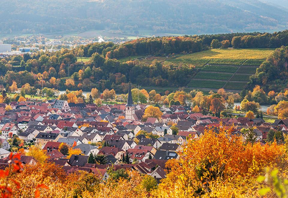 Panoramablick auf Miltenberg und Umgebung