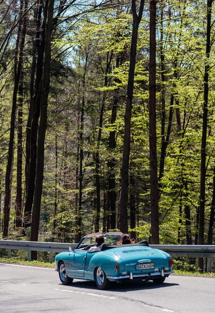 Osterglockenfahrt durch den Odenwald