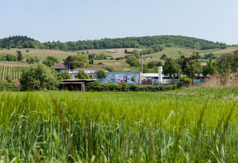 Odenwald Quelle Heppenheim
