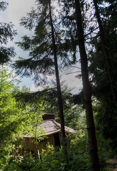 Marc Freukes Jurtenhütte im Wald