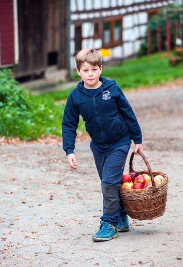 Pfeiffer junior mit Apfelkorb