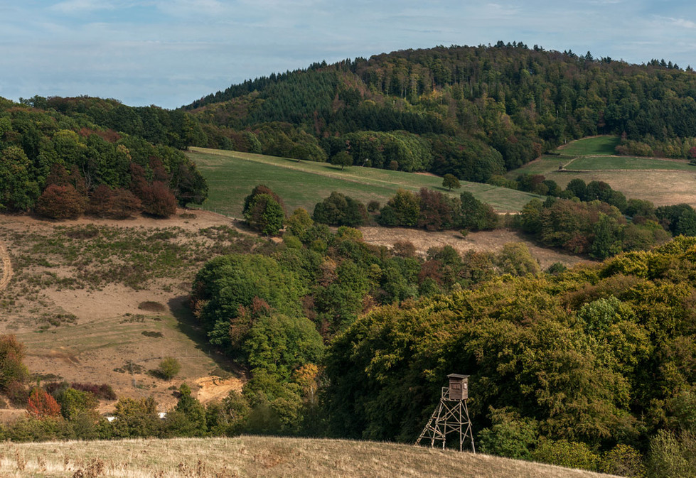 Landschaft im Odenwald