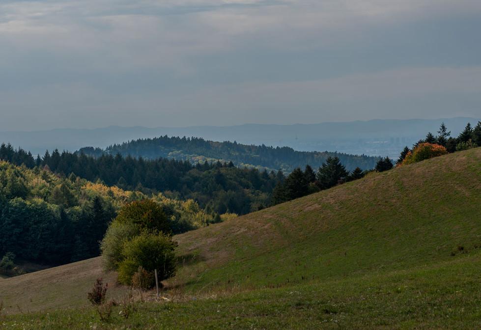 Odenwald mit Blick nach Mannheim