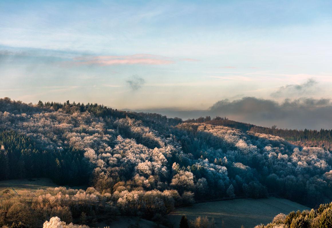 Winter im Odenwald