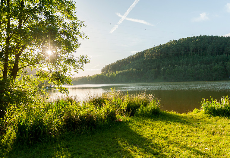 Marbach-Stausee