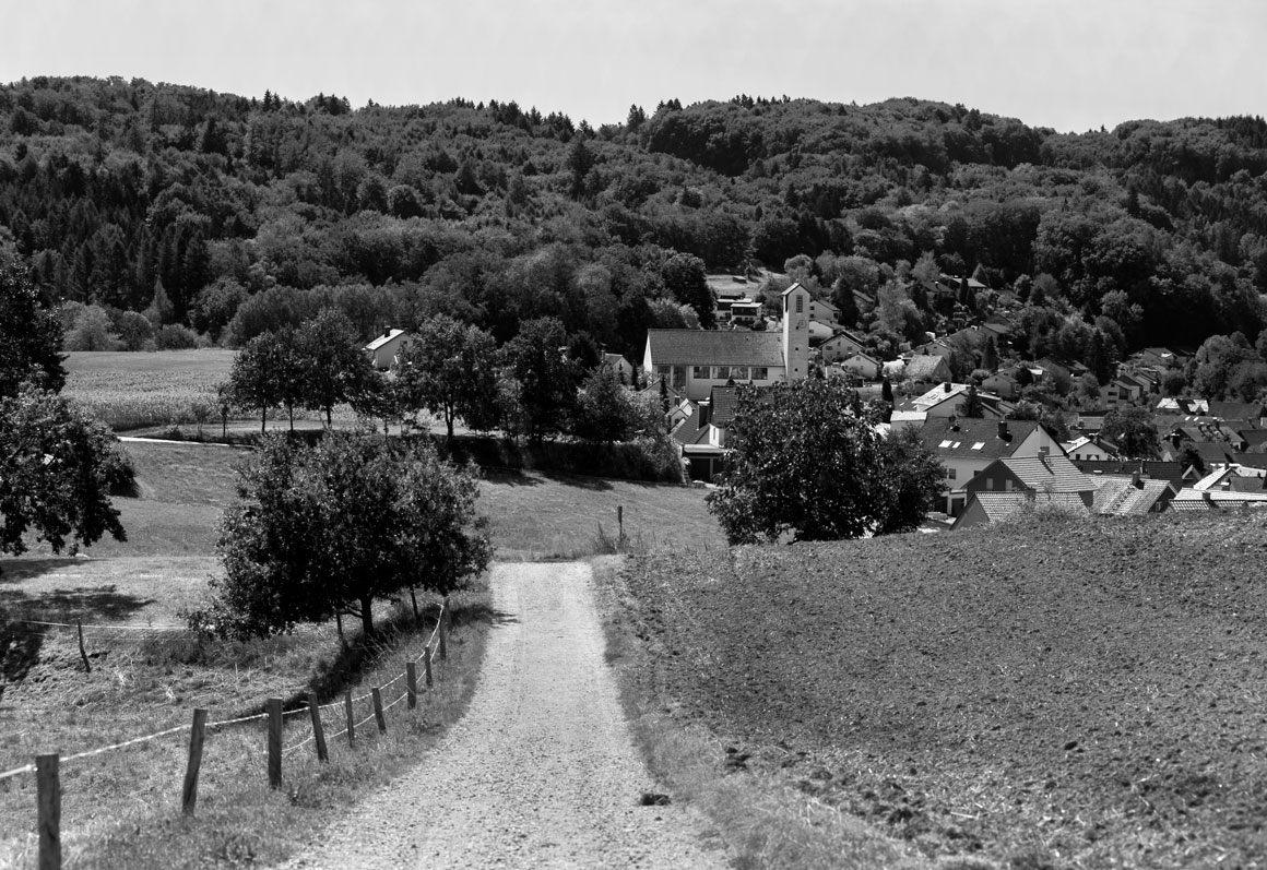 Odenwald,Wald-Erlenbach