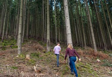 Geopark-Wanderung und Führung durch den ersten deutschen Waldlehrpfad im Odenwald.