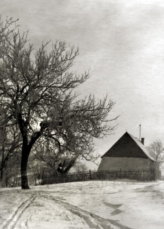 Wald-Michelbach – Winter auf dem Land