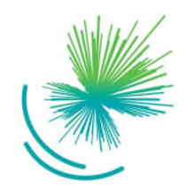 Logo Innovations Fund.jpg