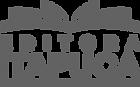 Logo EDITORA ITAPUCA_pb.png