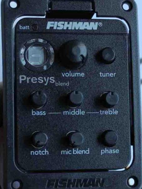 Fishman 301