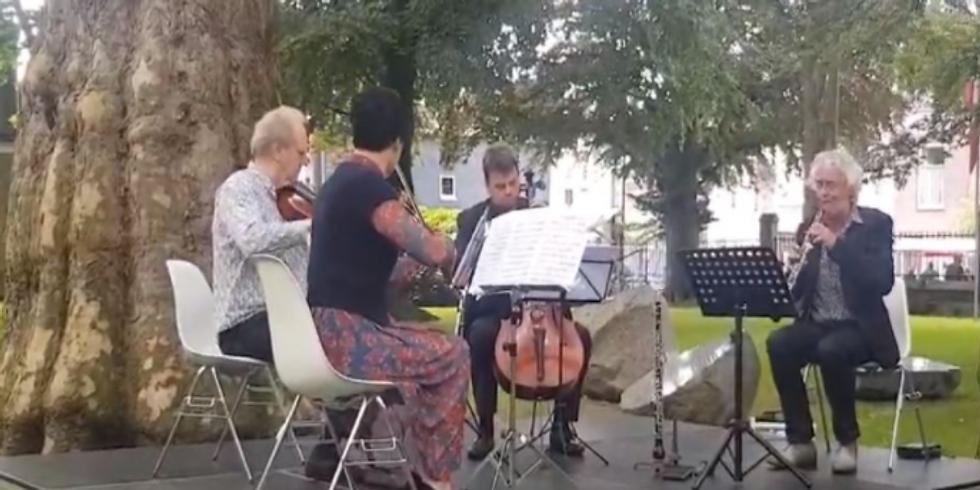 Picknick Concert