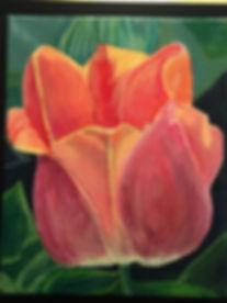 Tulip.2016.jpg