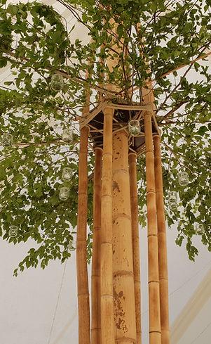 chapiteau tente bambou bambouctou mariage location de tente bambou chapteau bambou