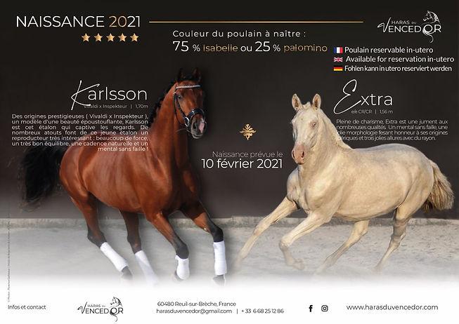 EXTRA X KARLSSON.jpg