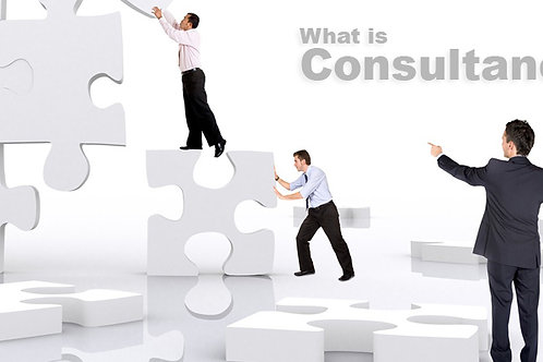 Consultancy, coaching of senior managers and staff