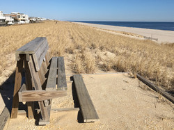 Bench at top of 31st Street Dune