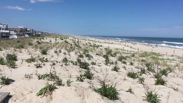 May 30, 2020 - A Beautiful Beach Day!