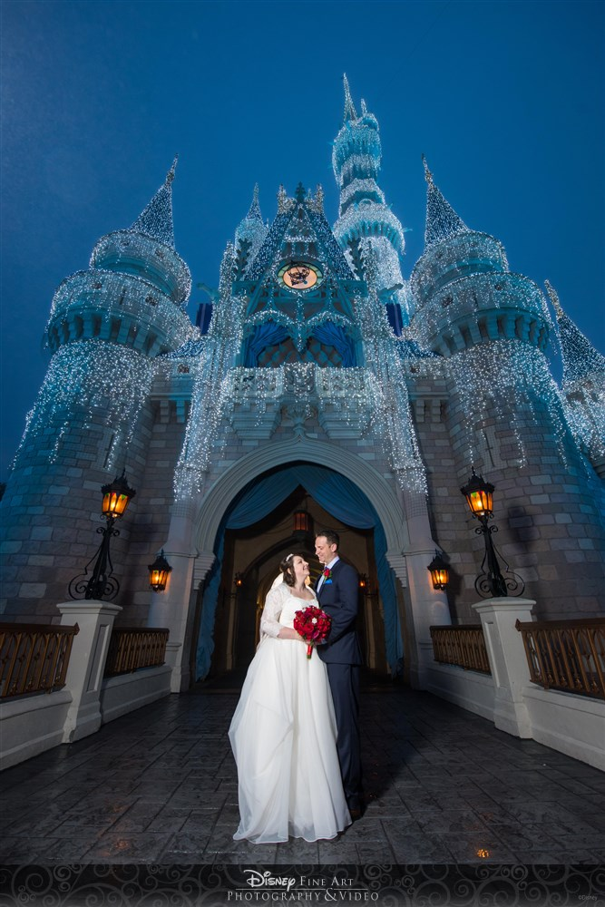 Disney Wedding Cinderellas Castel