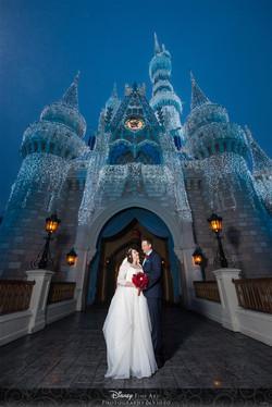 Disney Wedding Cinderellas Castel