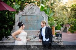 Disney Fairy Tale Wedding Orlando