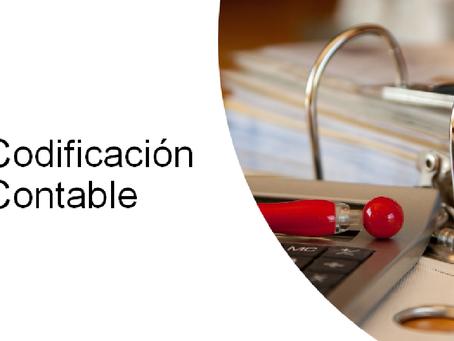 Codificación contable