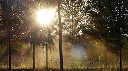 Coucher de soleil sur le chemin