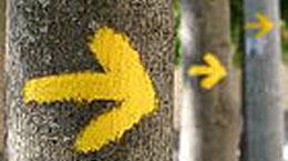 Suivez les flèches