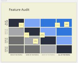 Feature Audit