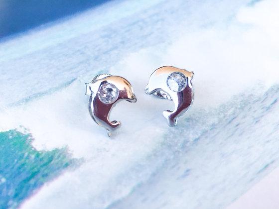Dolphins Earrings