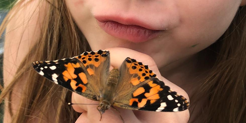 Natura Kid'z et les papillons vous donnent RDV à l'Estaminet de la ferme aux oies !