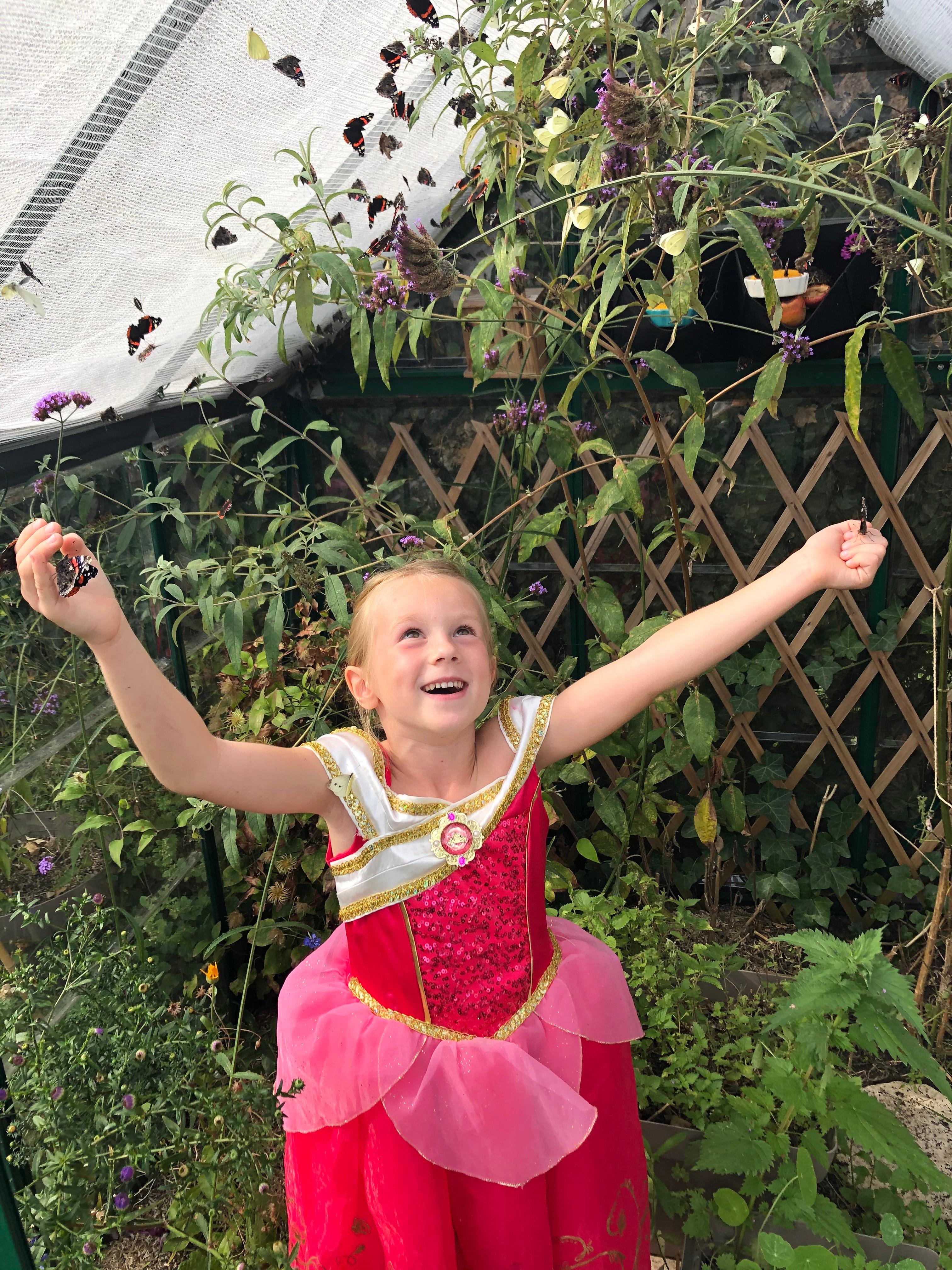 Anniversaire Papillon 5-10 ans