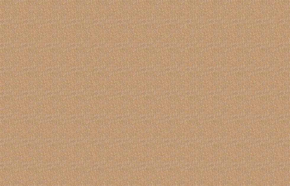 3_cork texture-seamless.jpg