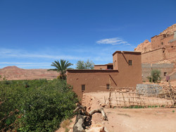 Residence in bustling oasis